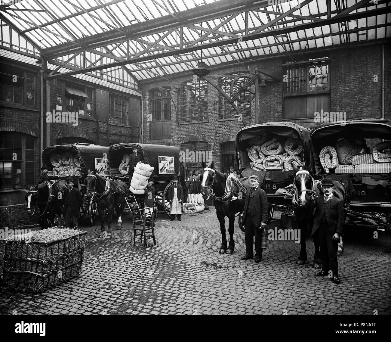 Mattress delivery vans, Heal & Son Ltd, 195-199 Tottenham Court Road, Camden, London, 1897. Staff and horse-drawn wagons loaded with mattresses an - Stock Image