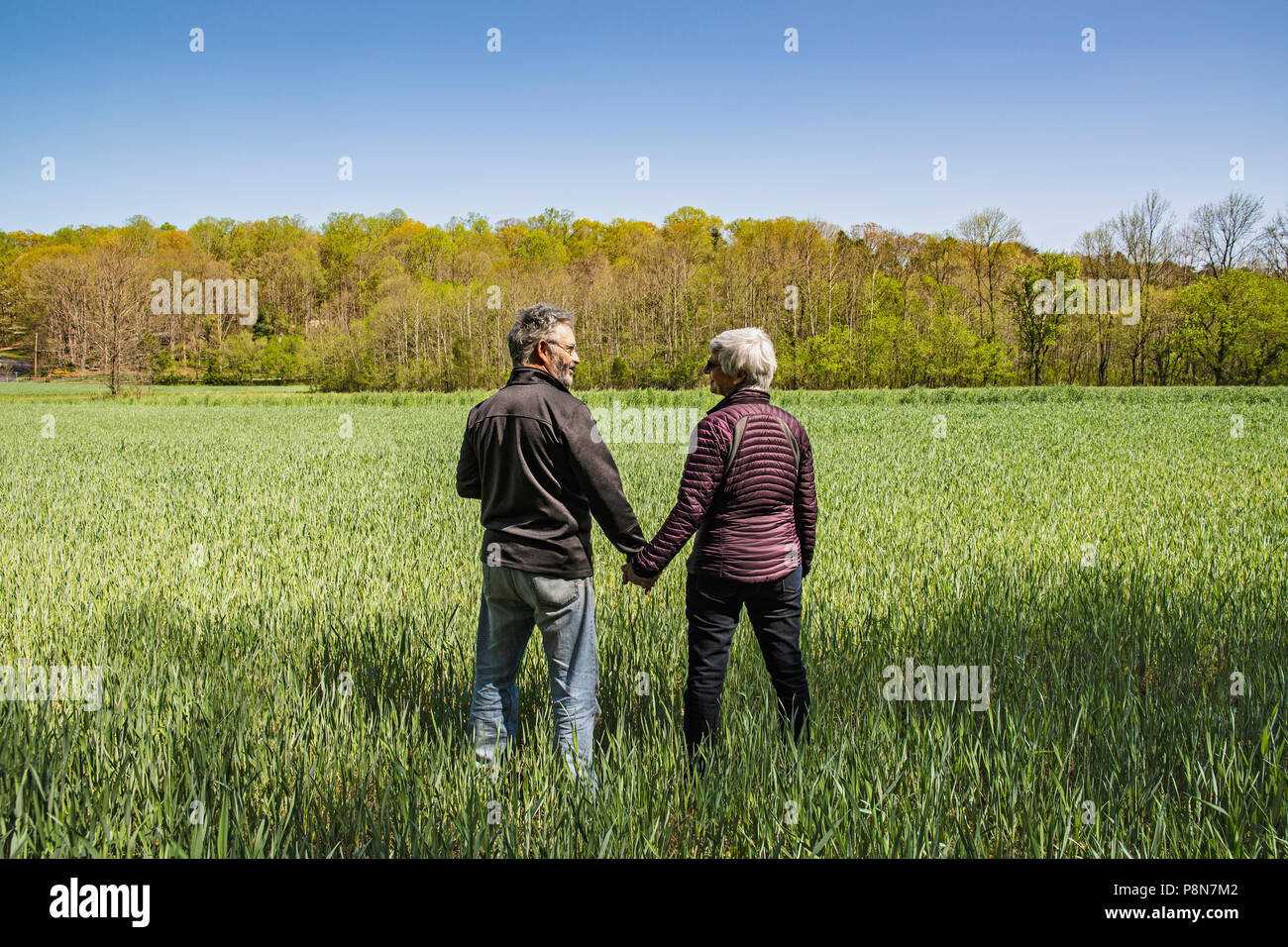 MATURE COUPLE HOLDING HANDS IN FIELD, WINSTON - SALEM, NC, USA Stock Photo
