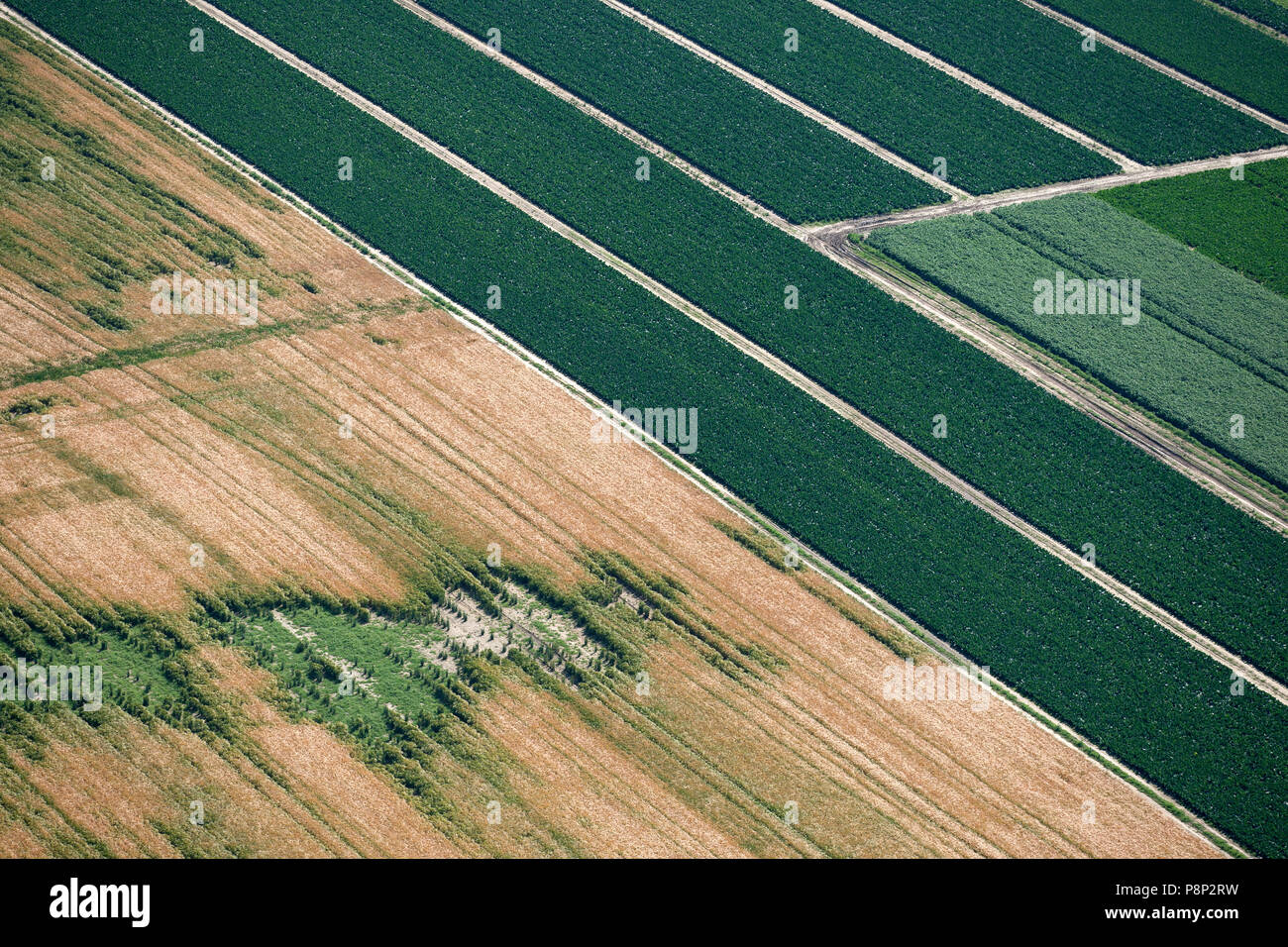 Aerial of an agricultural field Stock Photo