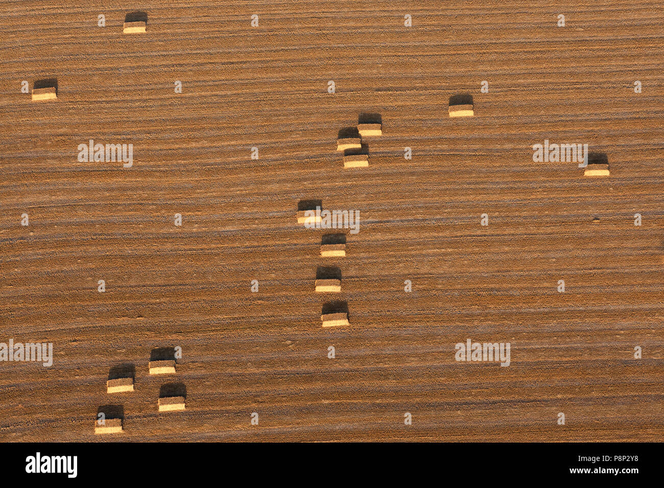 Aerial of a wheat field after the harvest - Stock Image