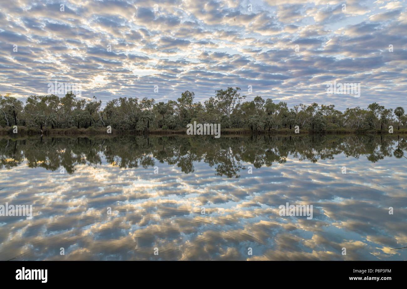 Reflection of Altocumulus clouds (Altocumulus stratiformis undulatis) in the Fortesque River - Stock Image
