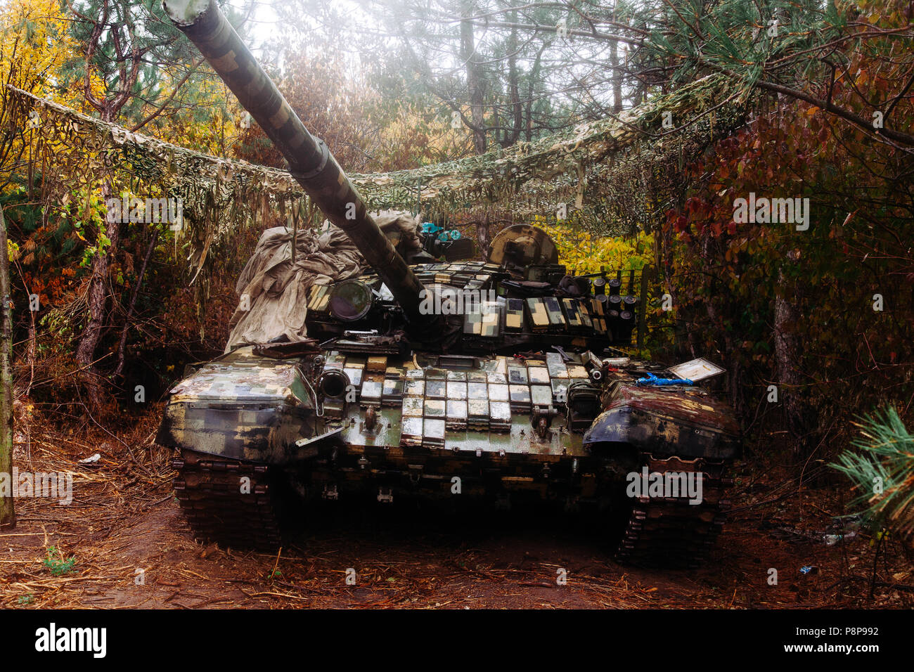 forest trenches stock photos forest trenches stock images alamy