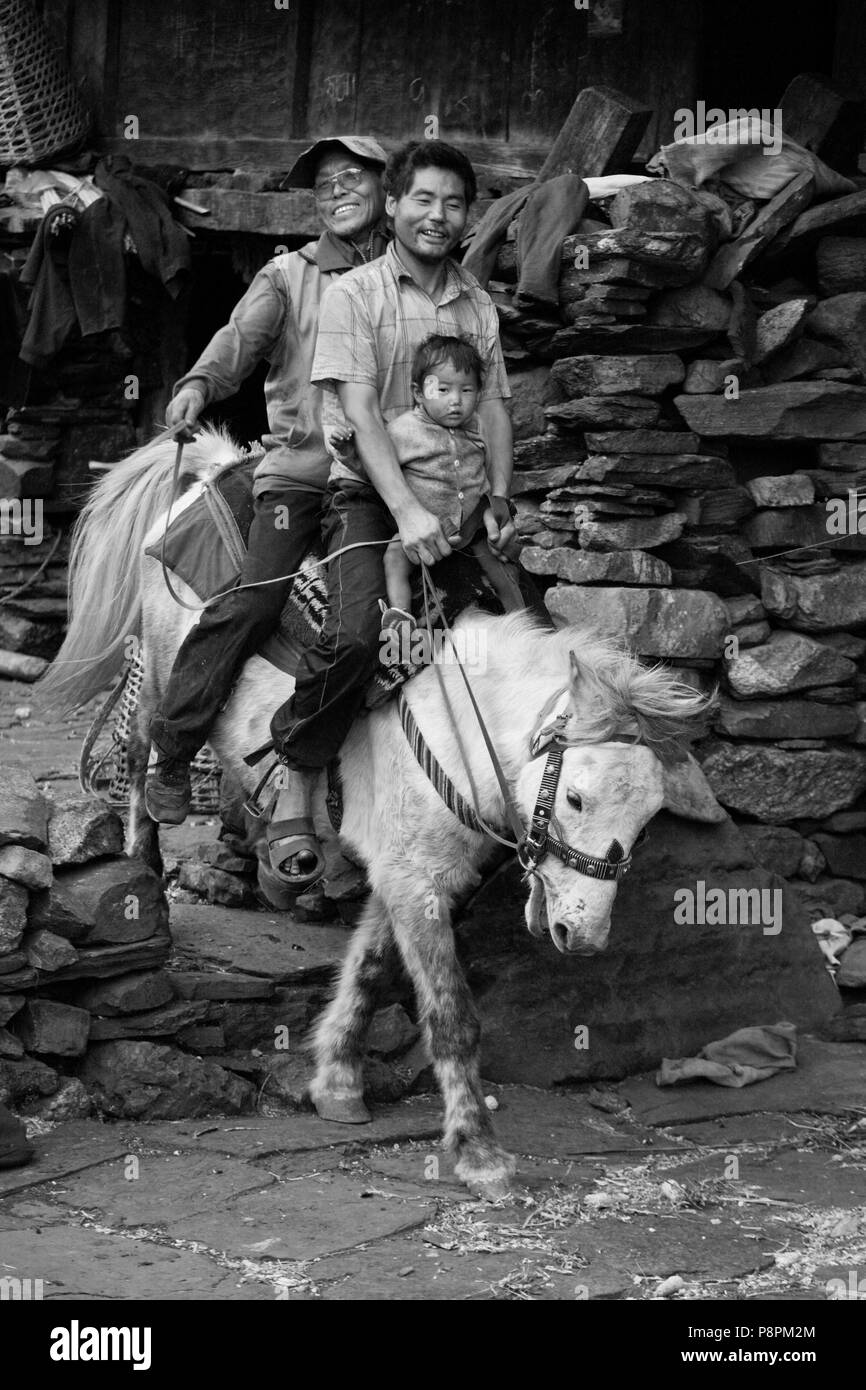 A monk rides a horse with a father and son in BIHI in the Buddhist area of NUPRI - AROUND MANASLU TREK, NEPAL - Stock Image
