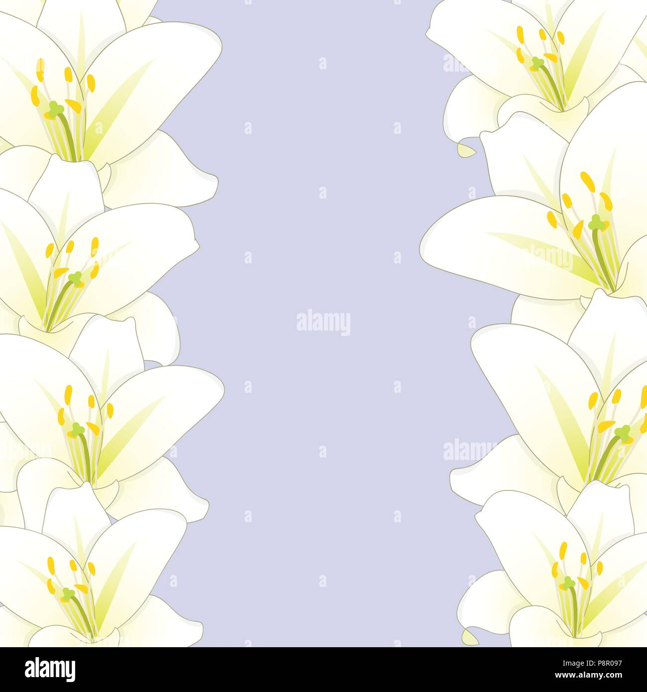 White lily flower border isolated on purple background vector white lily flower border isolated on purple background vector illustration izmirmasajfo