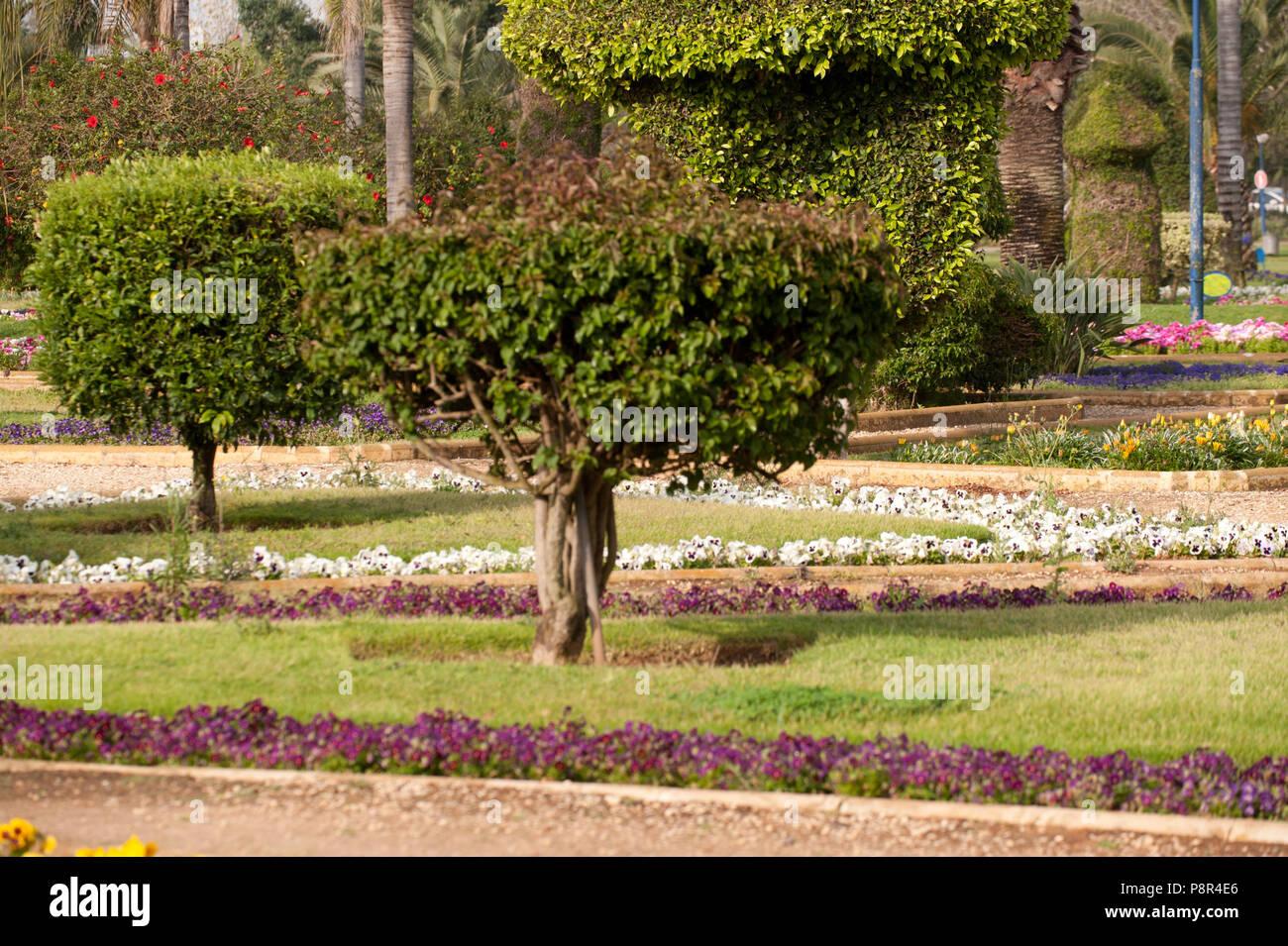 Beautiful garden with flowers ang trees stock photo 211950094 alamy beautiful garden with flowers ang trees izmirmasajfo