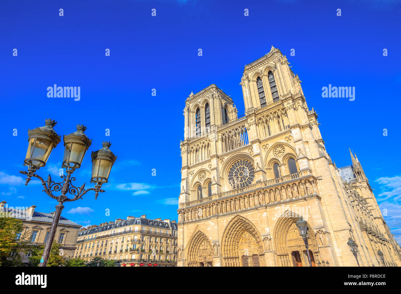 Typical iron street lamp with Notre Dame de Paris in the background, popular landmark and cathedral of the capital of France. Gothic French architecture of Our Lady of Paris in a sunny day, blue sky. Stock Photo