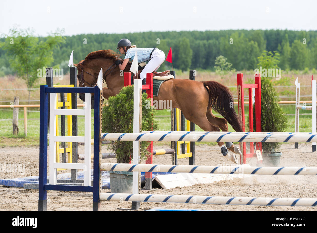 Equestrian Sports, Horse jumping, Show Jumping, Horse Riding - Stock Image