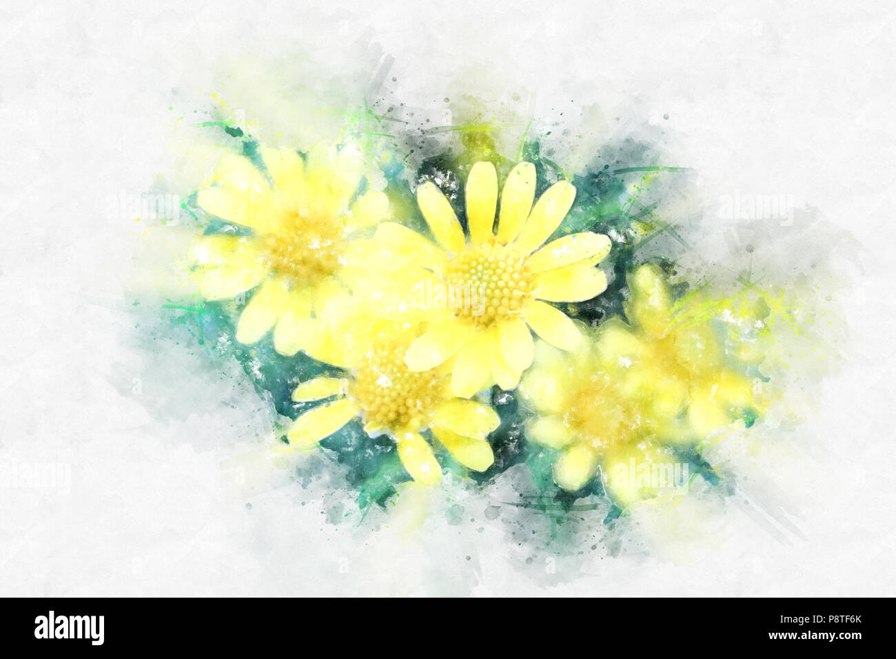 yellow flowers painted watercolor high resolution stock photography and images alamy alamy