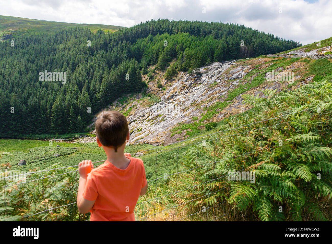 Boy looking at the Waterfall heatwave has caused it to nearly run dry in Glenmacnass valley, Wicklow mountains, Ireland.  Glenmacnass Waterfall. - Stock Image