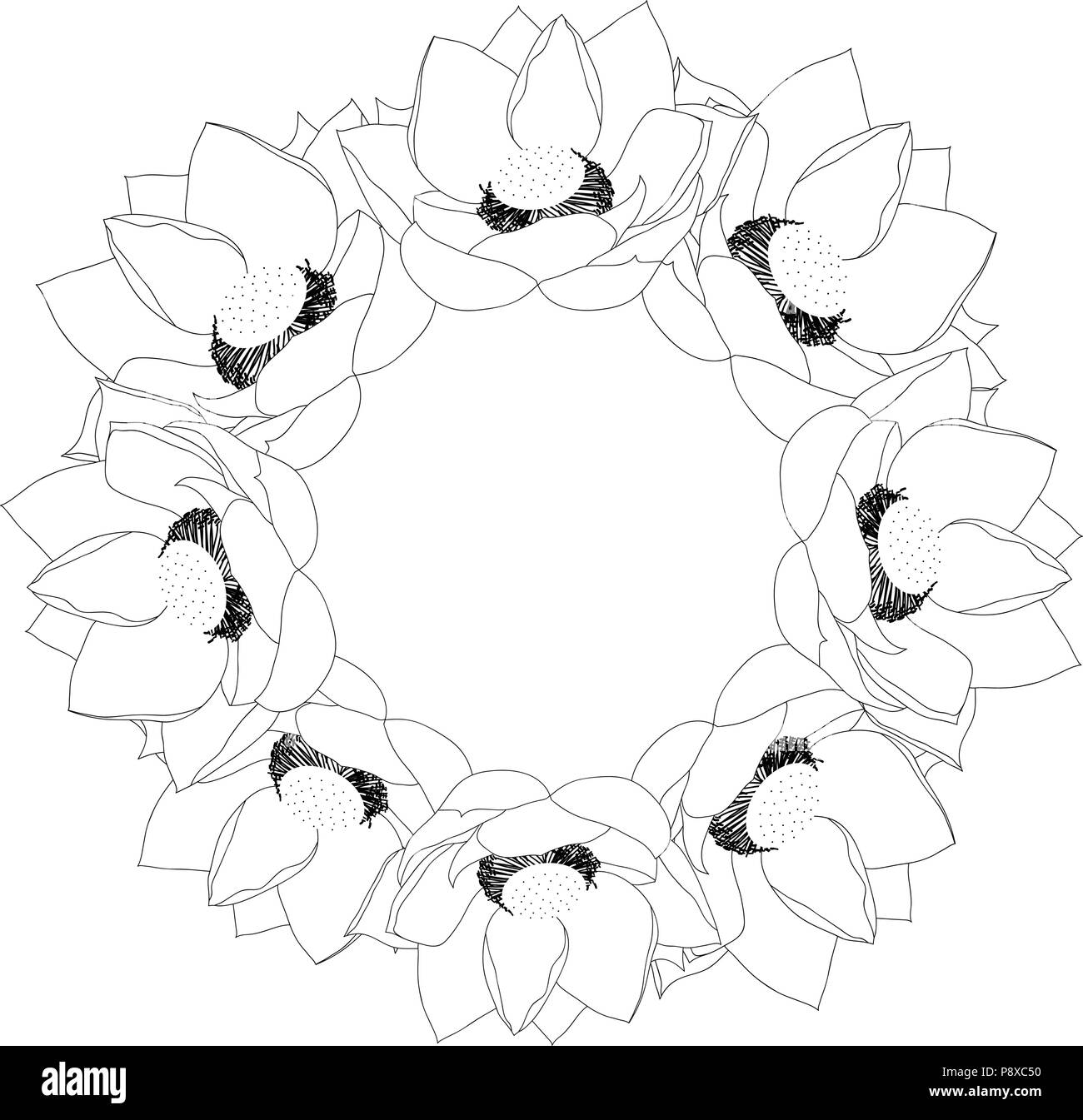Indian Lotus Outline Wreath Nelumbo Nuciferasacred Lotus Bean Of