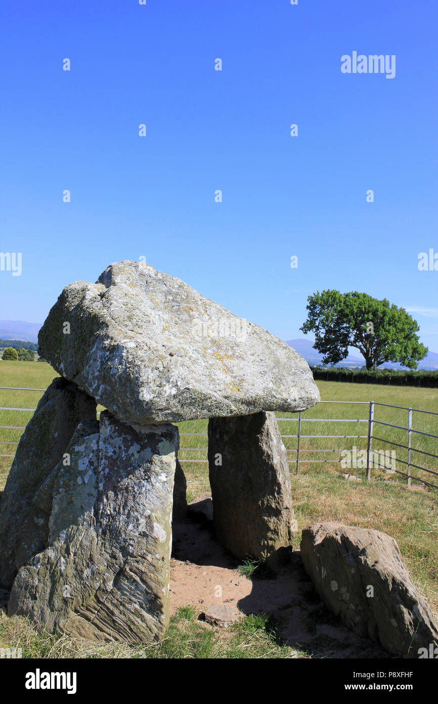 Bodowyr Burial Chamber, Llangaffo, Isle of Anglesey, Wales Stock Photo