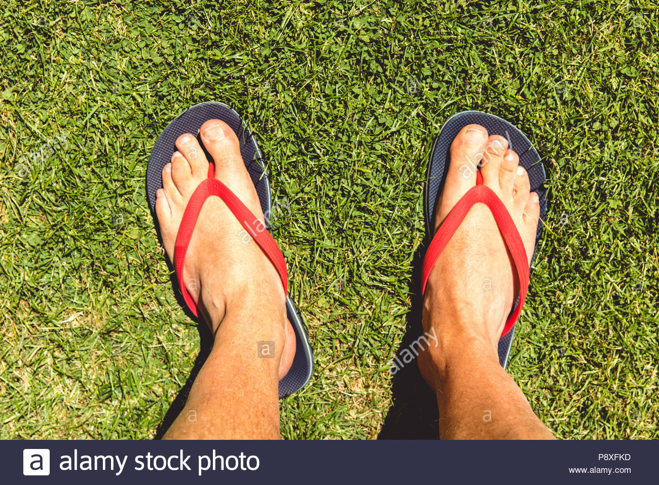 150fa9d8f7b Man wearing flip flops on hot summer day with grass background - Stock Image