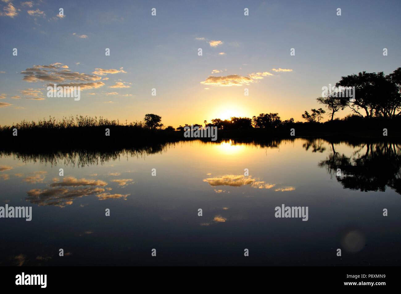 Botswana: Sunset in the flooded Okavango-Delta-swamps in the middle of the central Kalahari desert - Stock Image