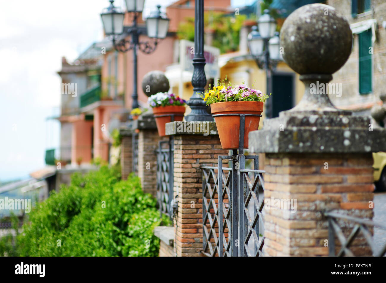Beautiful Flowers Pots With Blossoming Flowers In Scenic Town Of