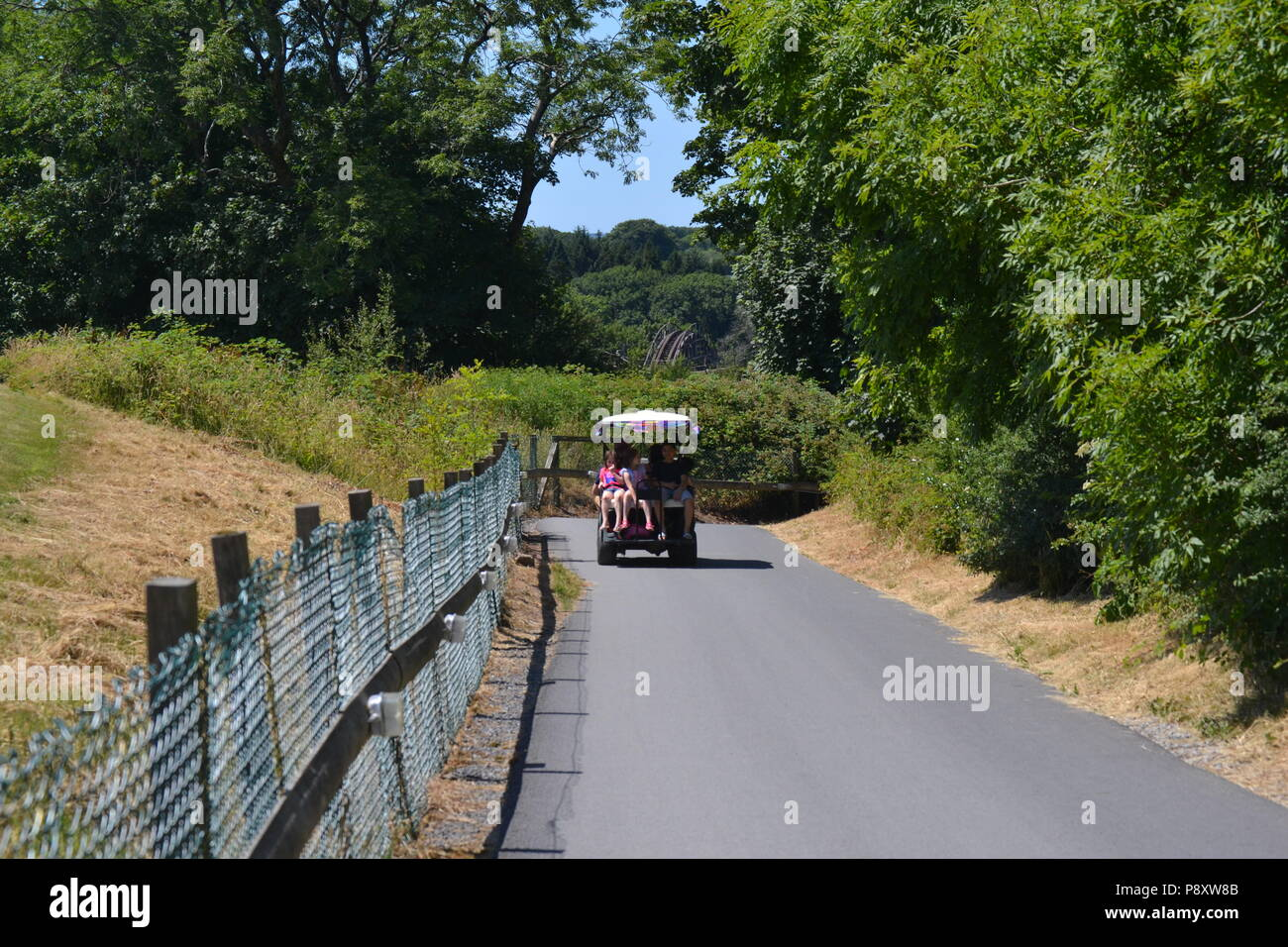 golf buggy ride - Stock Image