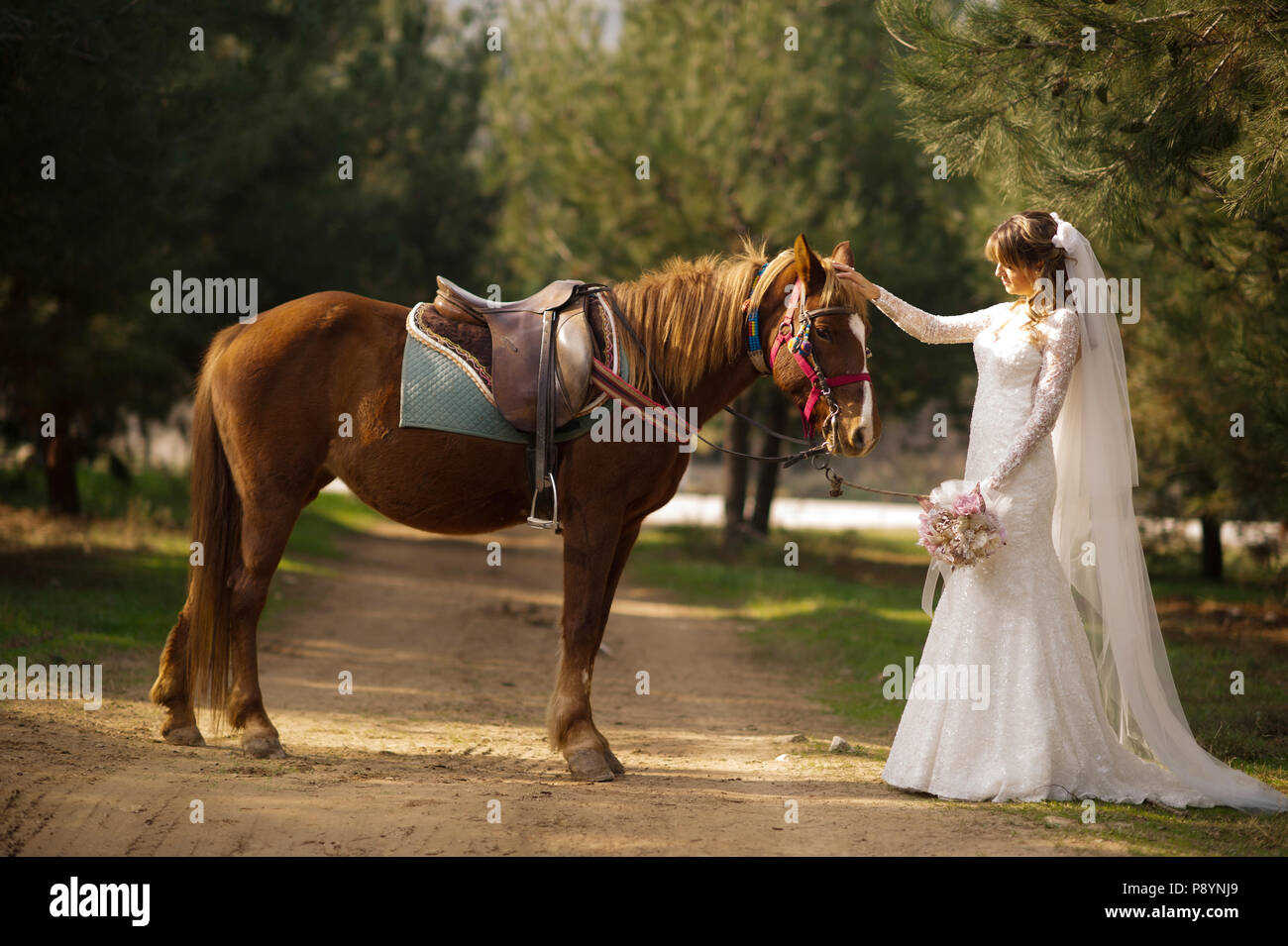 Bride And Groom Horse Traditional Wedding Ceremony Marriage Turkish Stock Photo Alamy