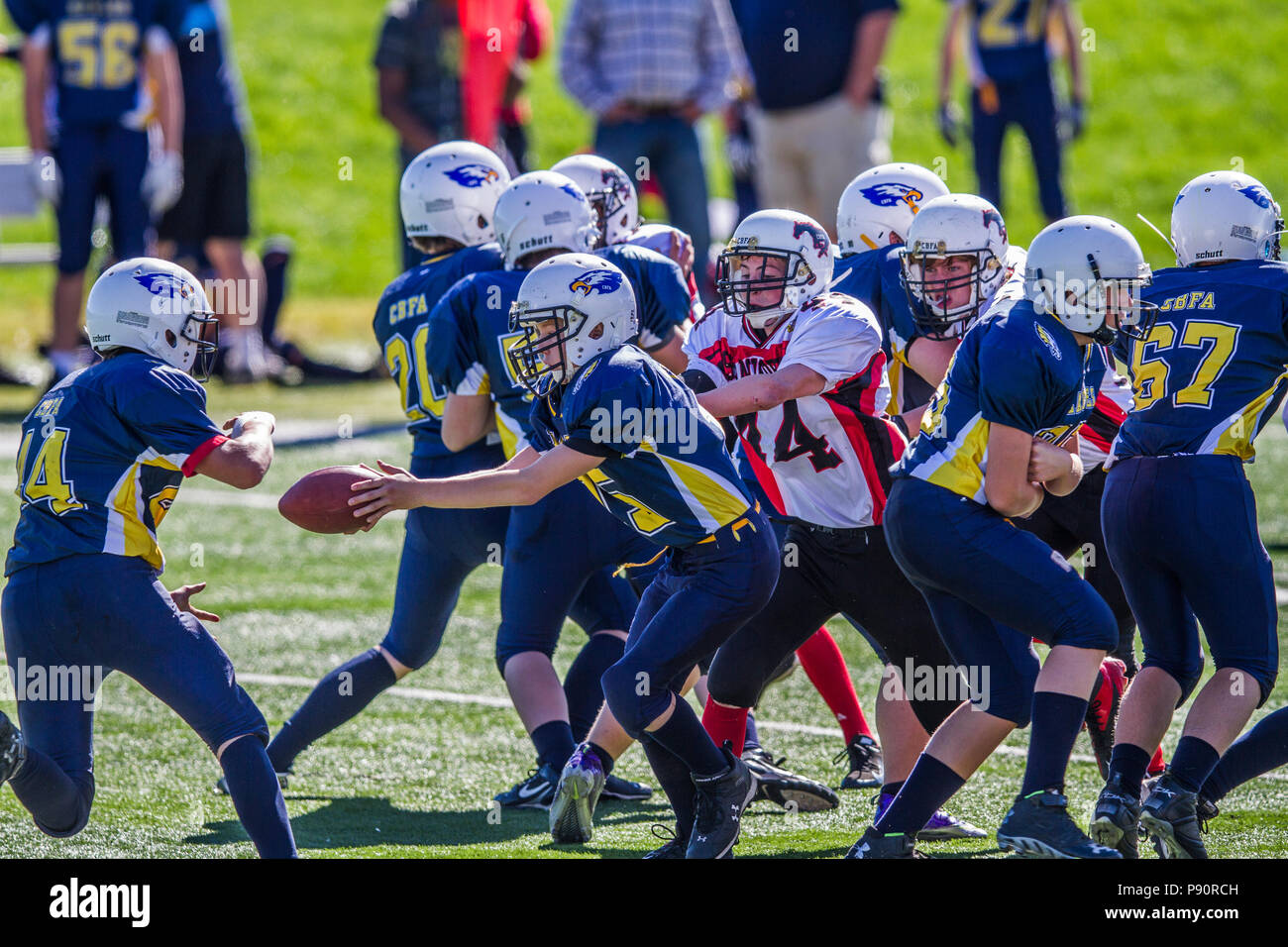 Dramatic, colorful action photo's of handoff during Boys Bantam football in Calgary, Alberta, Canada - Stock Image