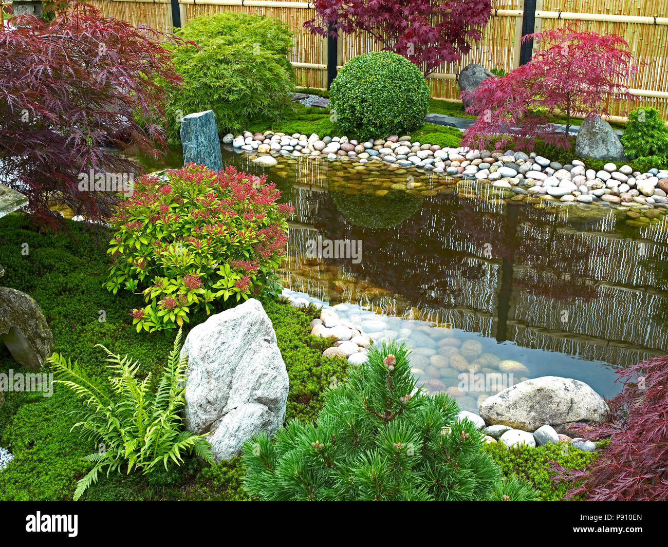 traditional japanese water garden with plants shrubs rocks and acer and maple trees - Water Garden Plants