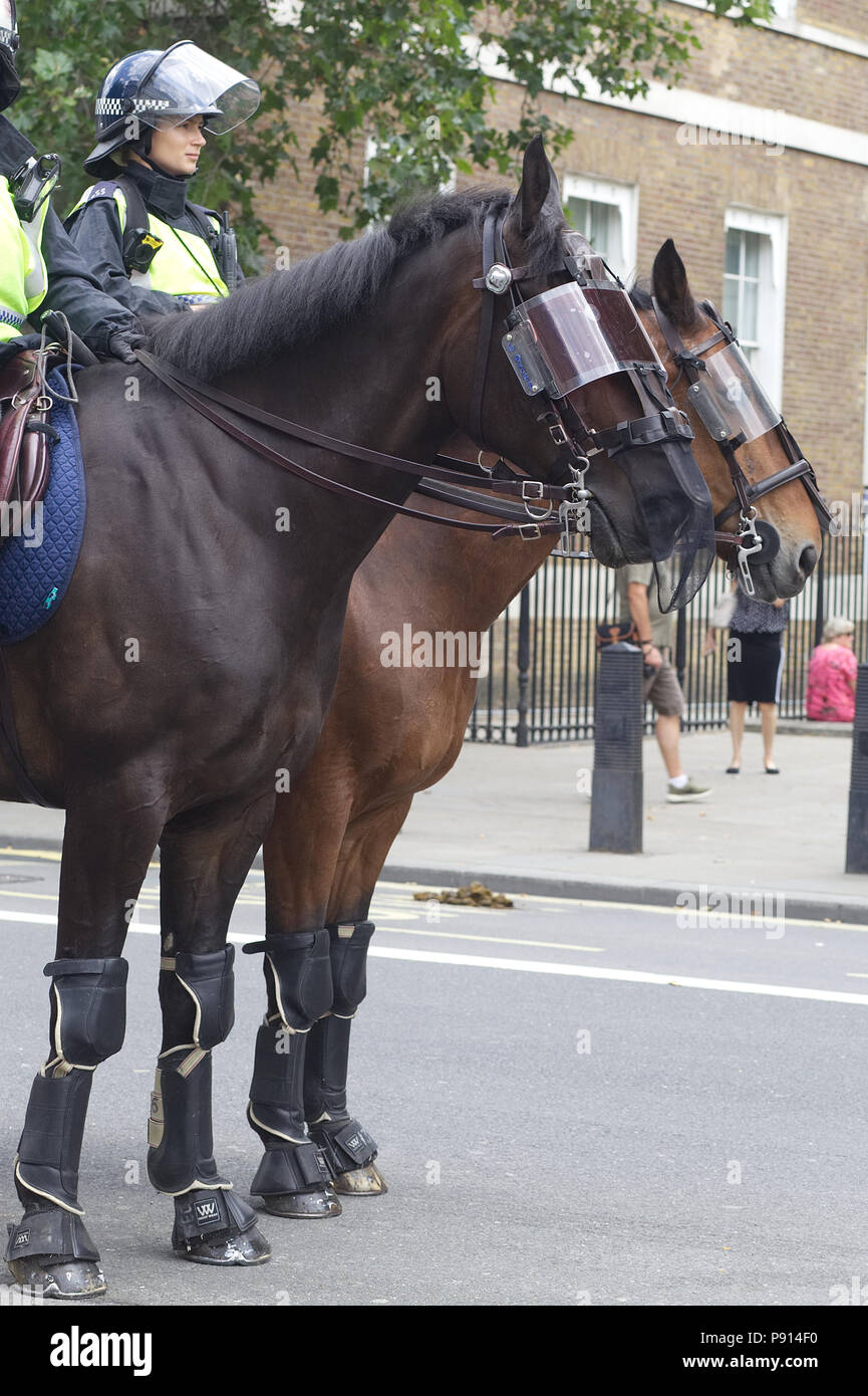 Police Horses In Riot Gear High Resolution Stock Photography And Images Alamy