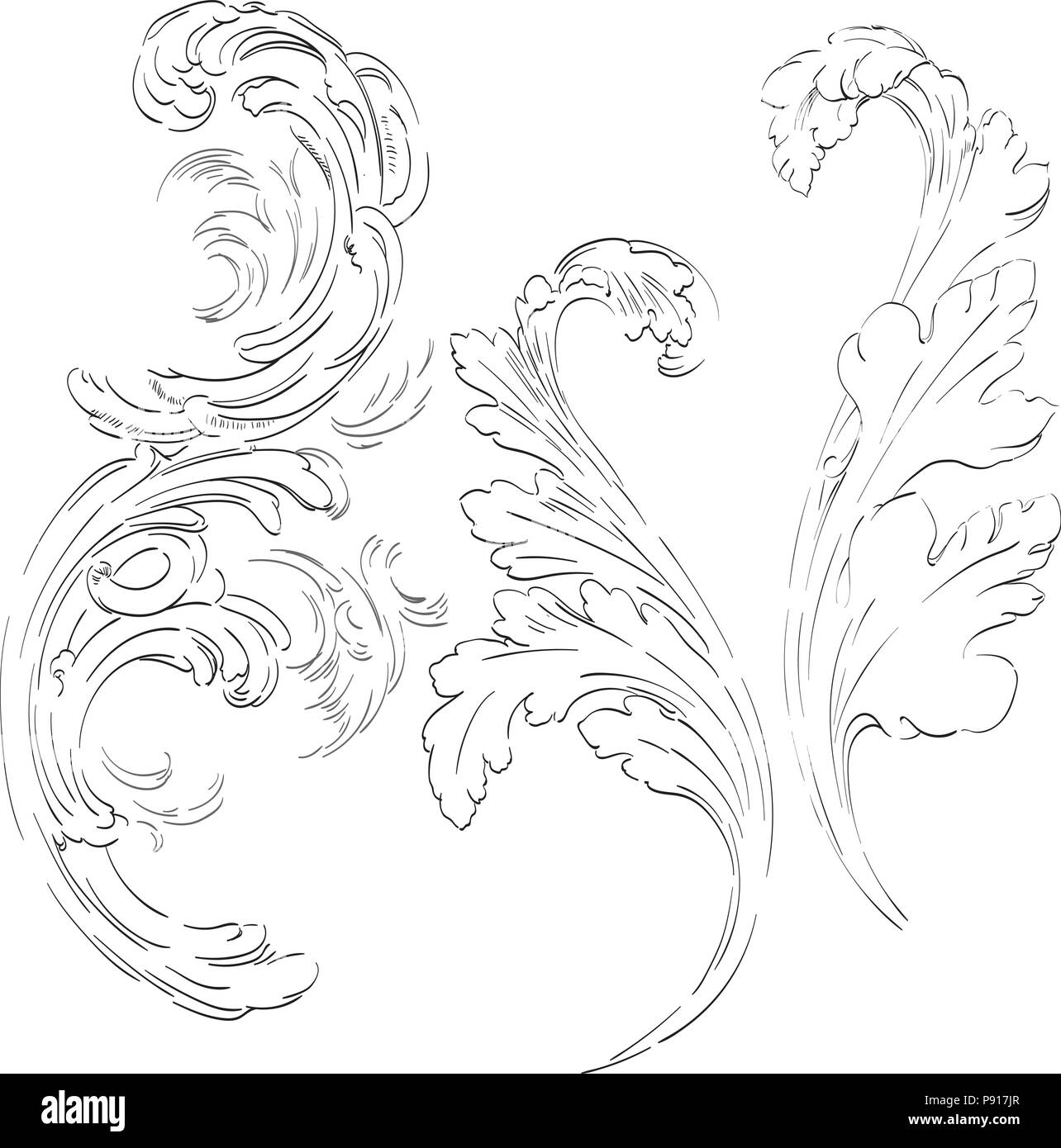 . Acanthus leaf vector  Victorian baroque ornaments  Border  frame