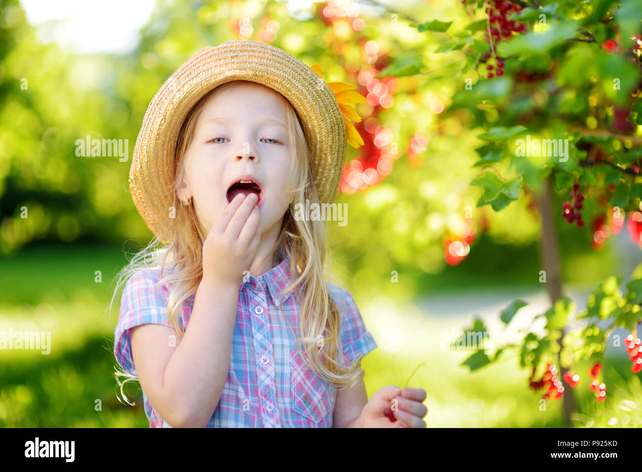 little girl picking wild organic stock photos & little girl picking