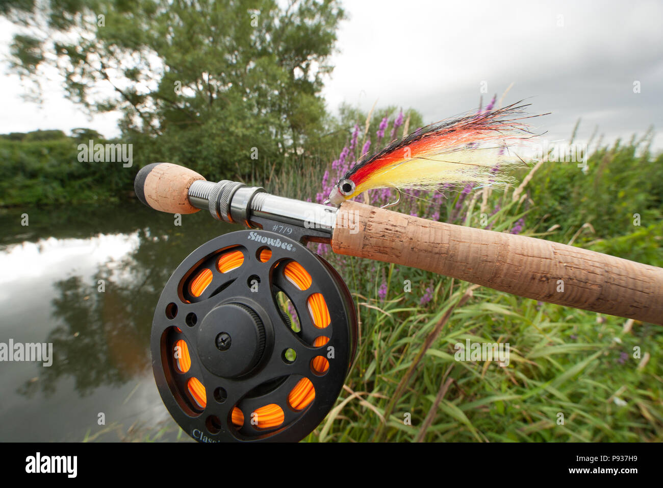 Fly for catching predatory fish, bought from a fishing tackle shop and in this case intended for pike fishing in rivers in the UK. Dorset England UK G - Stock Image