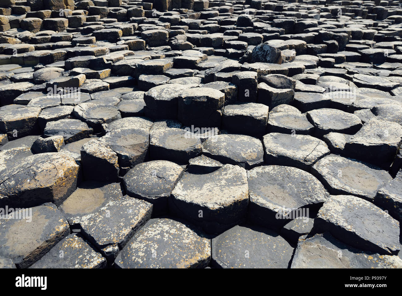 Giants Causeway, an area of hexagonal basalt stones, created by ancient volcanic fissure eruption, County Antrim, Northern Ireland. Famous tourist att - Stock Image