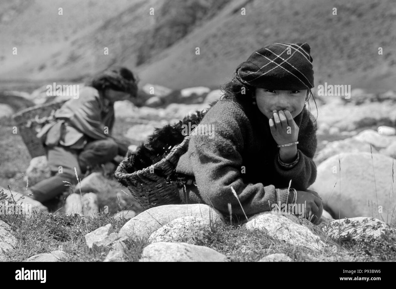Young TIBETAN WOMEN gather YAK DUNG which they use for fuel on the TIBETAN PLATEAU near NYALAM, TIBET - Stock Image