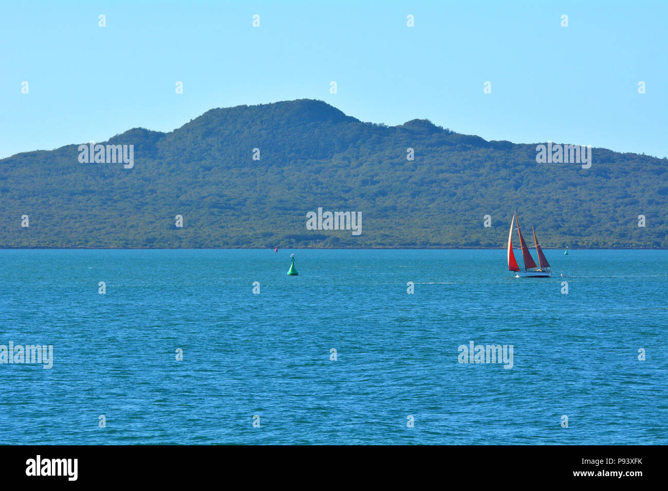 Sail boat yacht sailing near Rangitoto Island  in the Hauraki gulf in Auckland region at the North Island of New Zealand. copy space - Stock Image