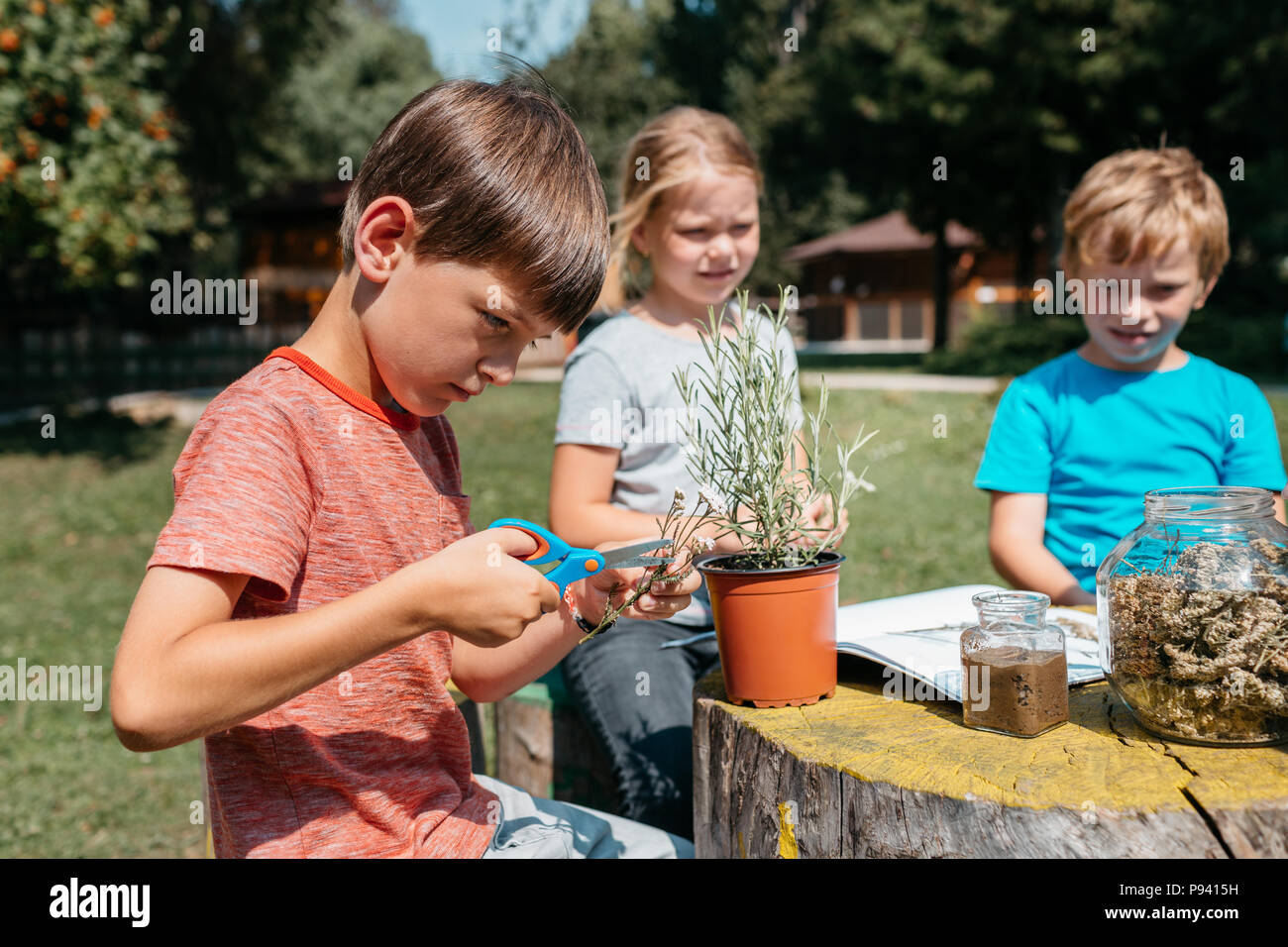 Kids learning together at a natural science class. Side view of a primary student exploring herbs and plants with his classmates in a school garden. - Stock Image