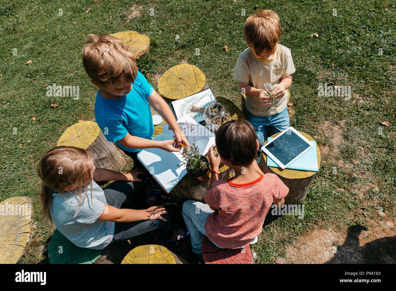 Group of classmates learning together at a natural science lesson outside in a garden. Top view of children cooperating on a school project. - Stock Image