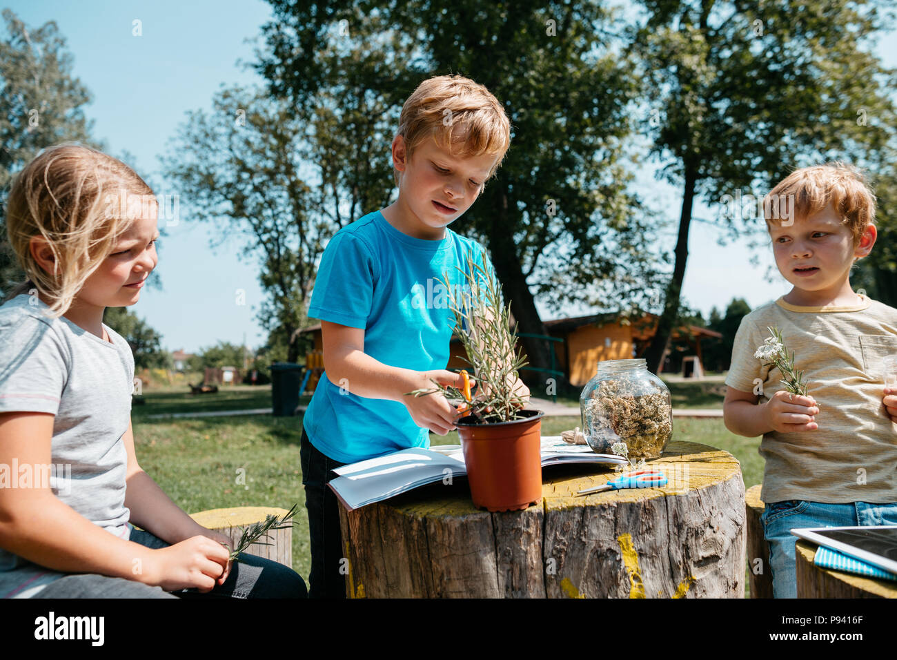 Homeschooling - children working on an environmental project outside in a park. Young students learning about plants and herbs together. - Stock Image