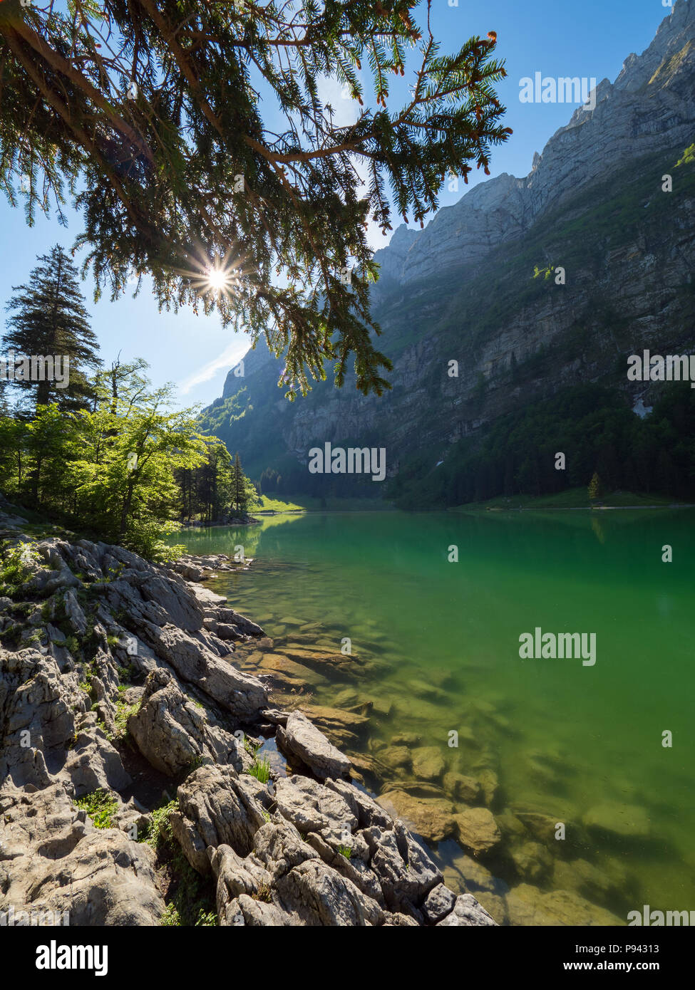 Sunny day at Seealpsee Stock Photo