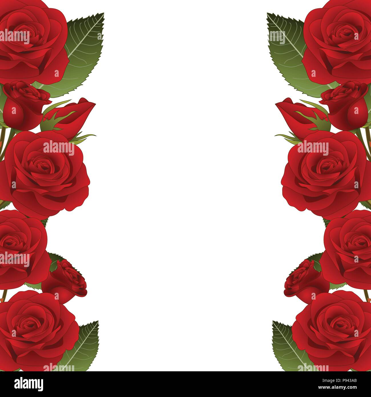 Red Rose Flower Frame Border. isolated on White Background. Vector ...
