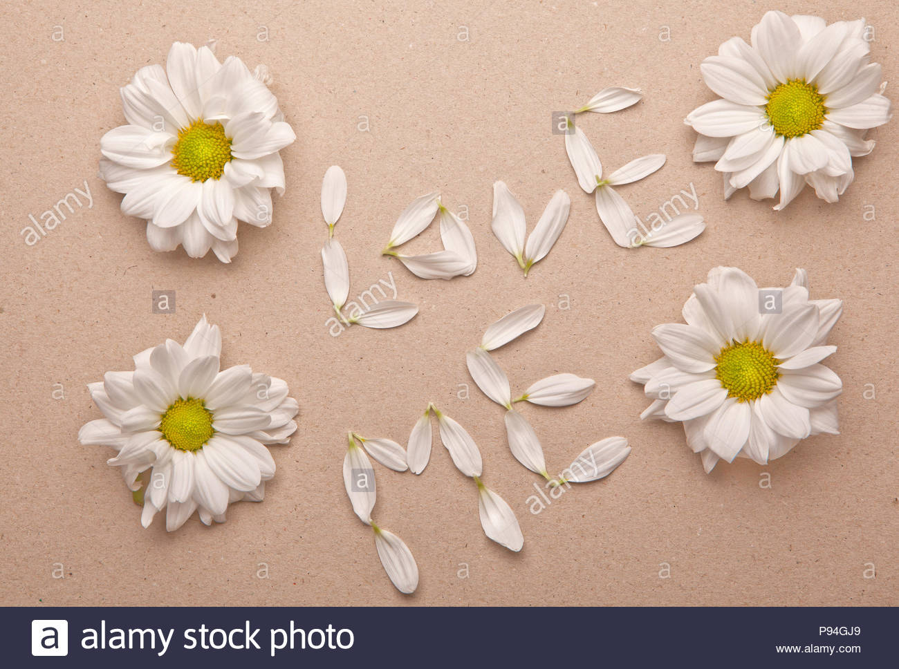 flowers petals love text - Stock Image