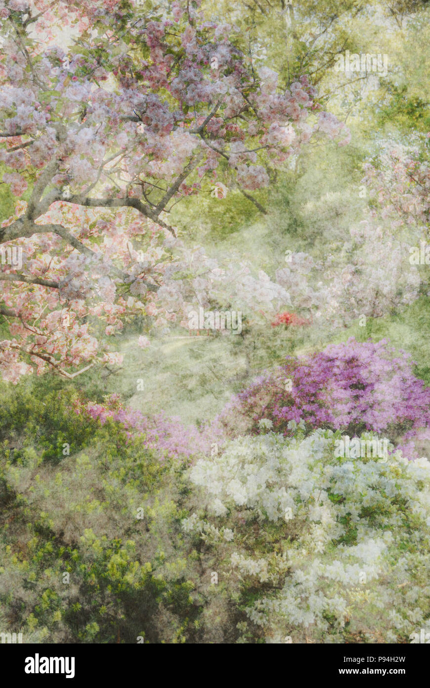 Abstract garden floral background, hazy spring pastels - Stock Image