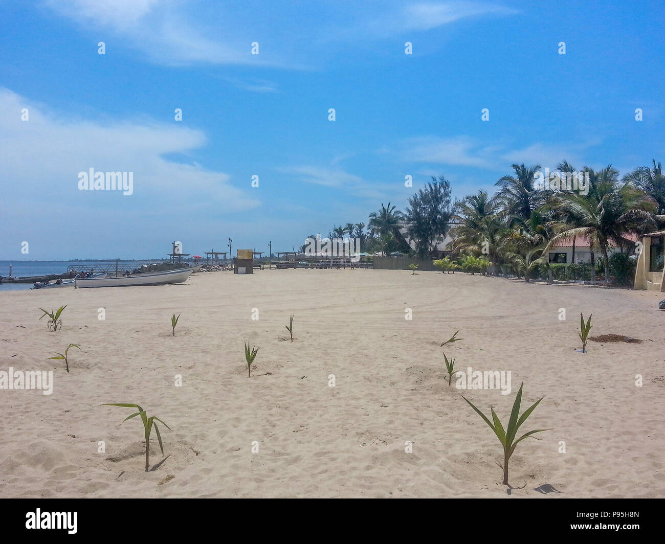 tropical beach with palm trees, sand, boat, houses and blue sky, located on the island of Mussulo in Luanda, Angola - Stock Image