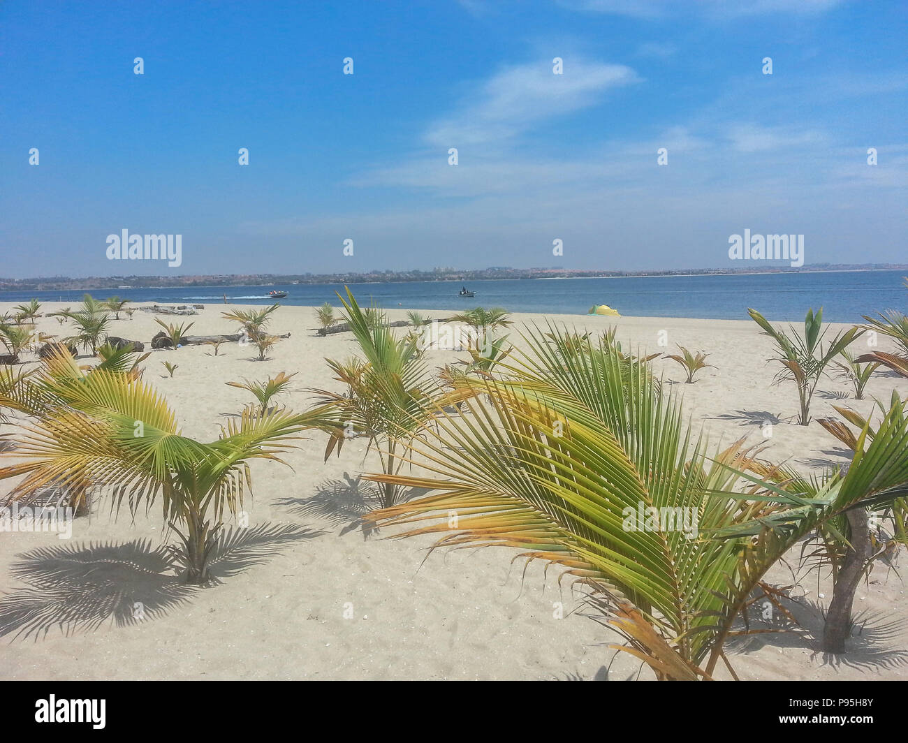 tropical beach with palm trees, sand, ocean water with a boat and blue sky, located on the island of Mussulo in Luanda, Angola - Stock Image