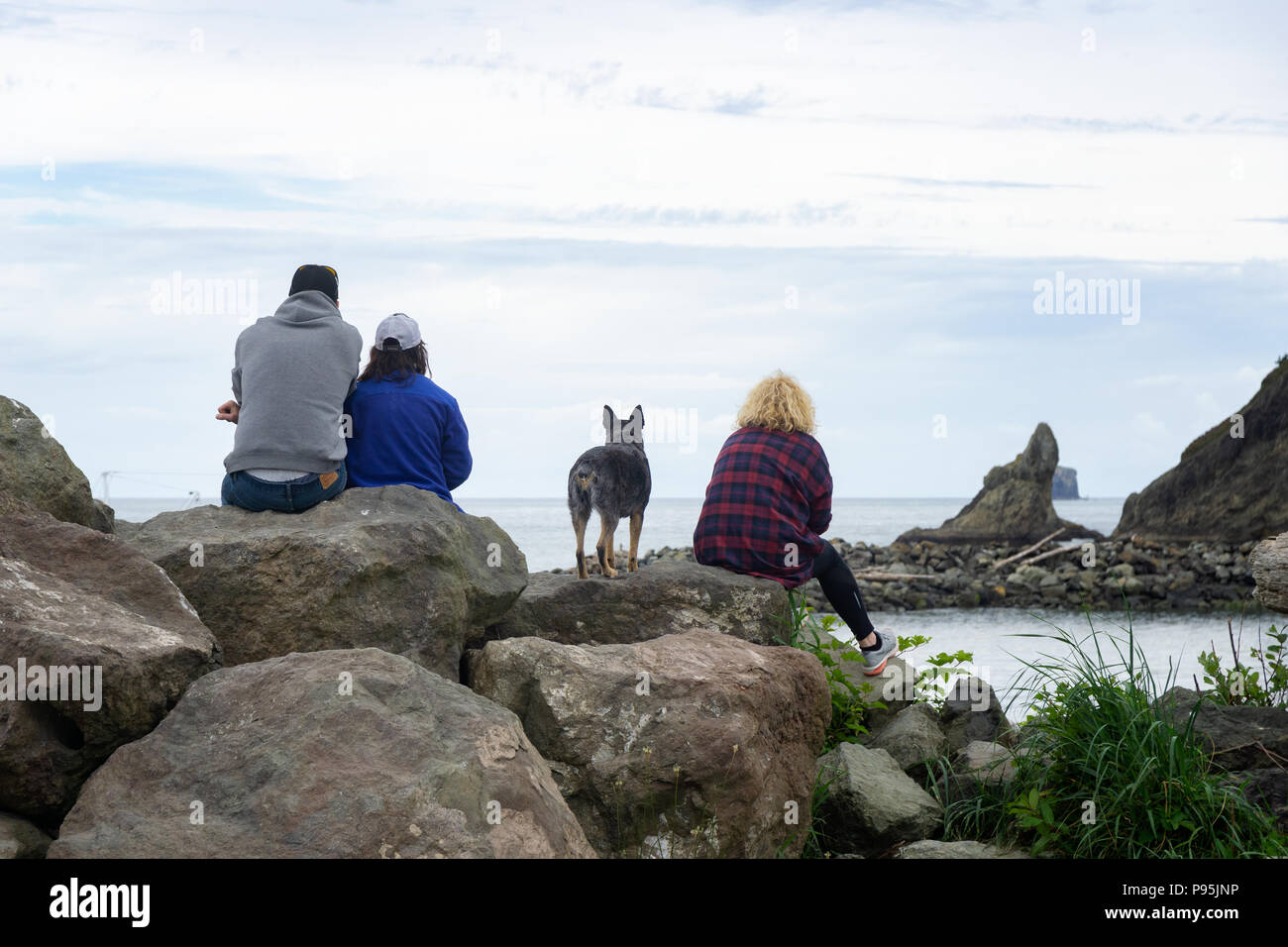 People and dog sitting on rocks looking at the pacific ocean at First Beach, La Push, Olympic Peninsula, Washington state. - Stock Image