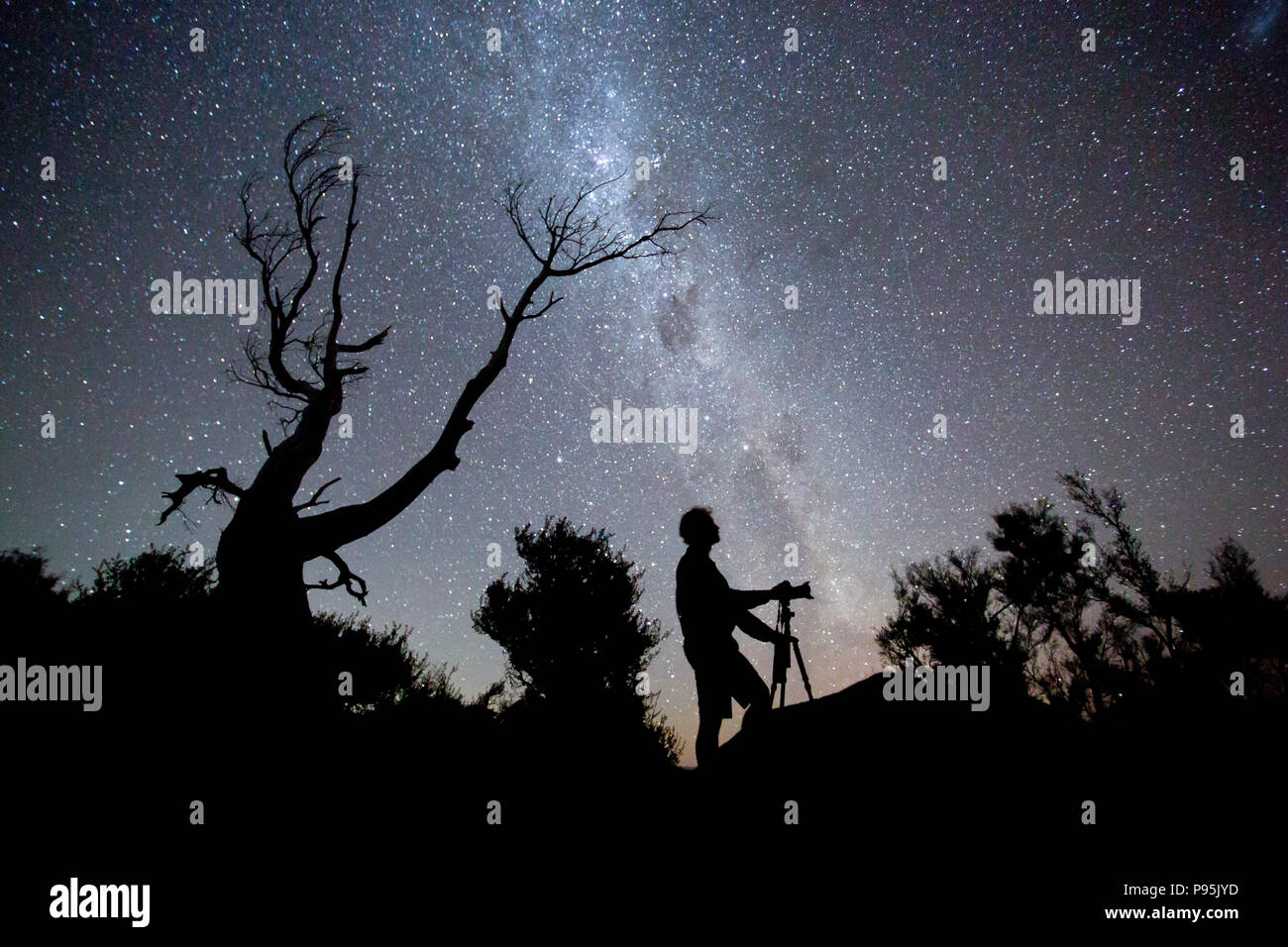 Man taking photographs under a starry night sky, New Zealand - Stock Image