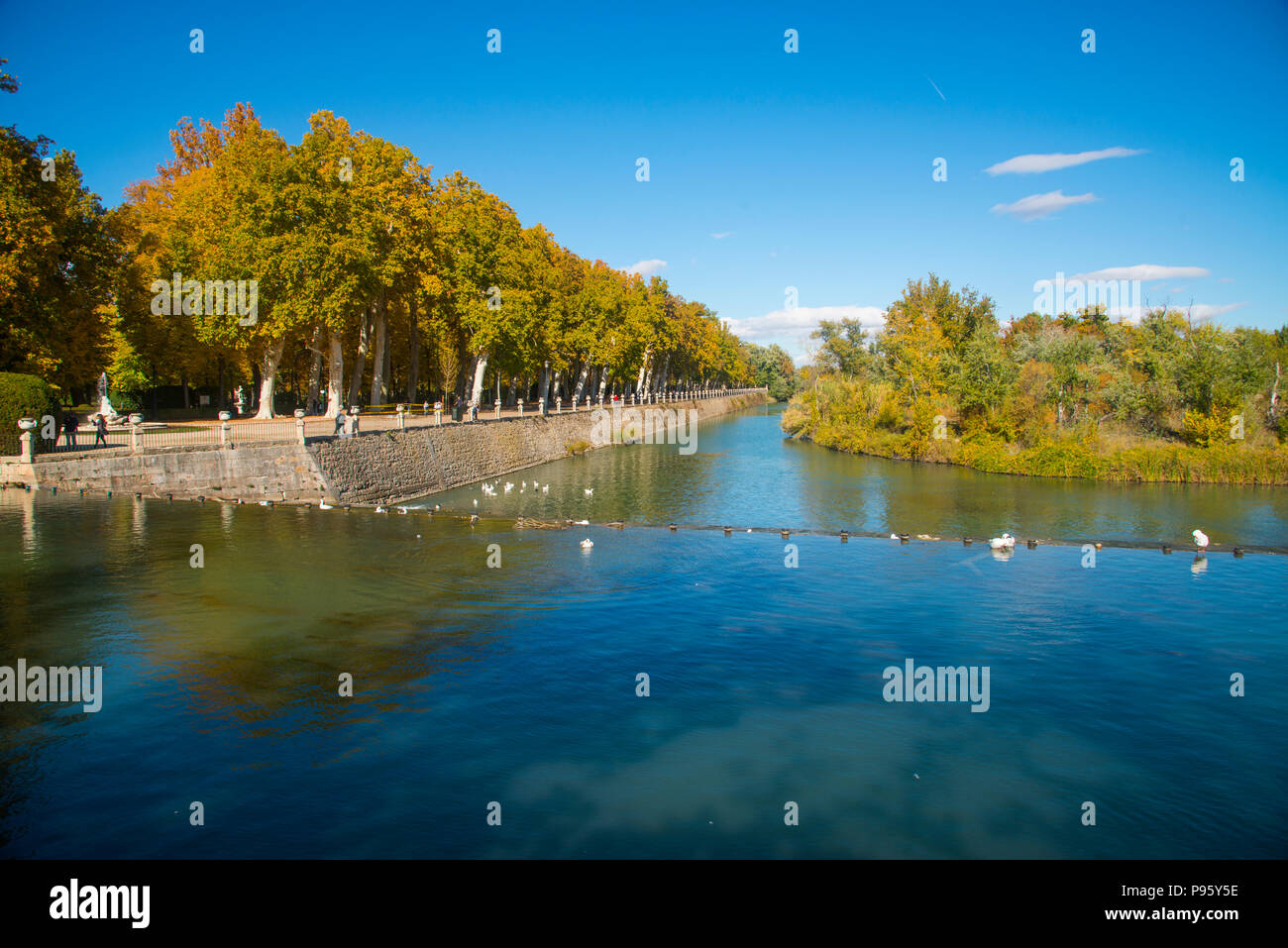 Canal of river Tajo and La Isla gardens in Autumn. Aranjuez, Madrid province, Spain. - Stock Image