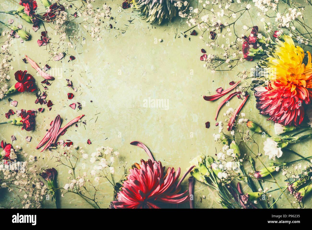 Beautiful summer garden flowers frame on green background