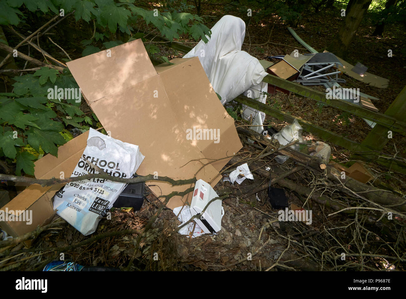 Fly tipping in woodland - Stock Image