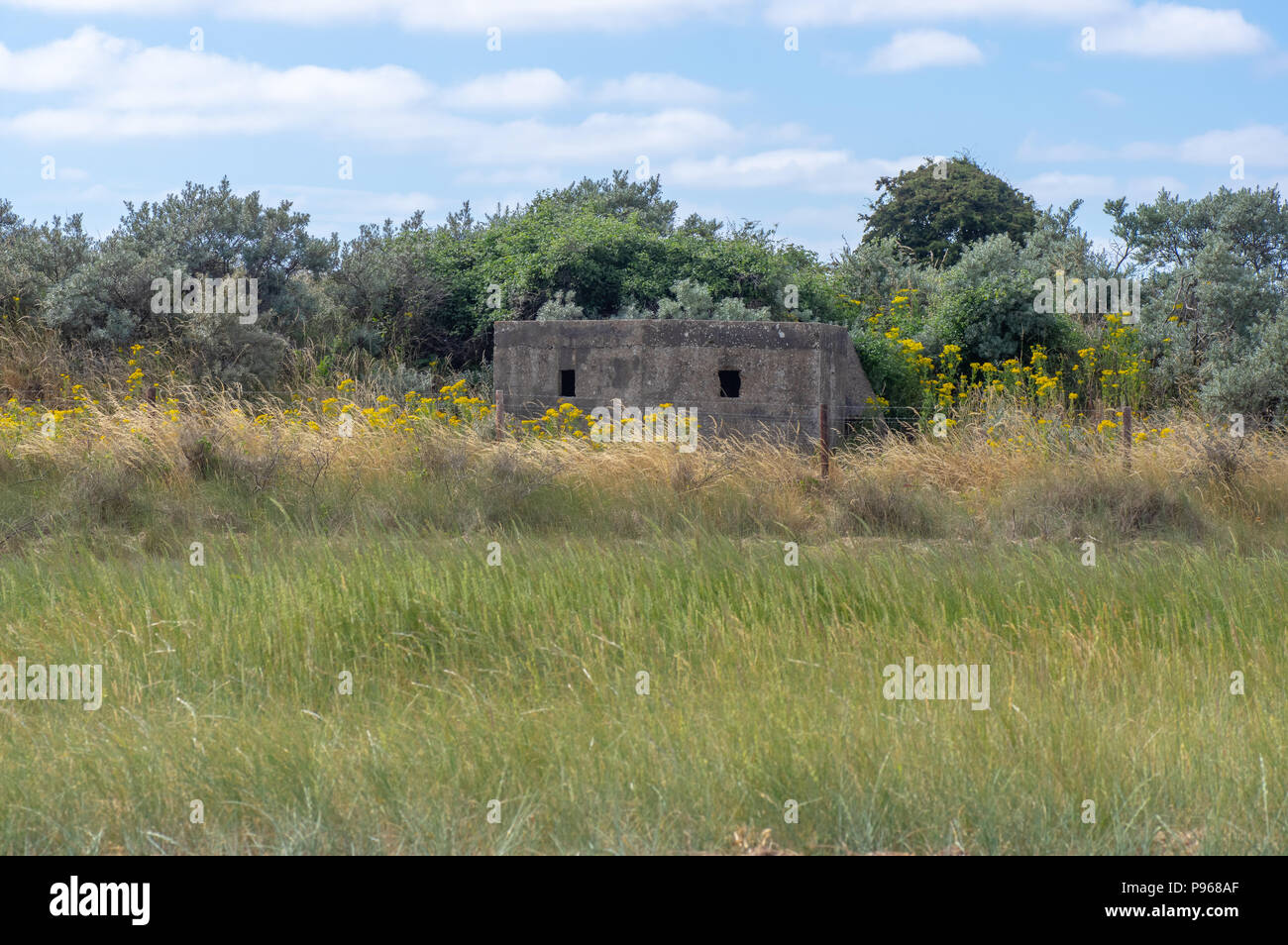 World War Two pillbox at Gibraltar Point. Military defense standing in National Nature Reserve near Skegness in Lincolnshire, UK - Stock Image