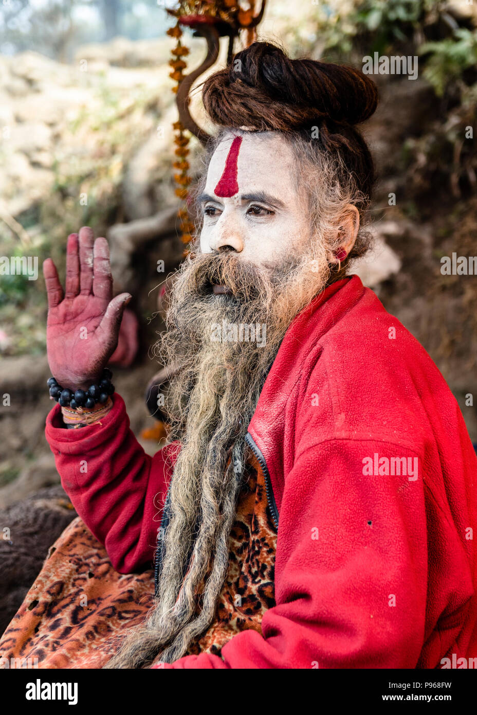 Sadhu posing for devotees during the traditional Hindu festival Maha Shivaratri in the vicinity of Pashupatinath temple in Kathmandu, Nepal - Stock Image