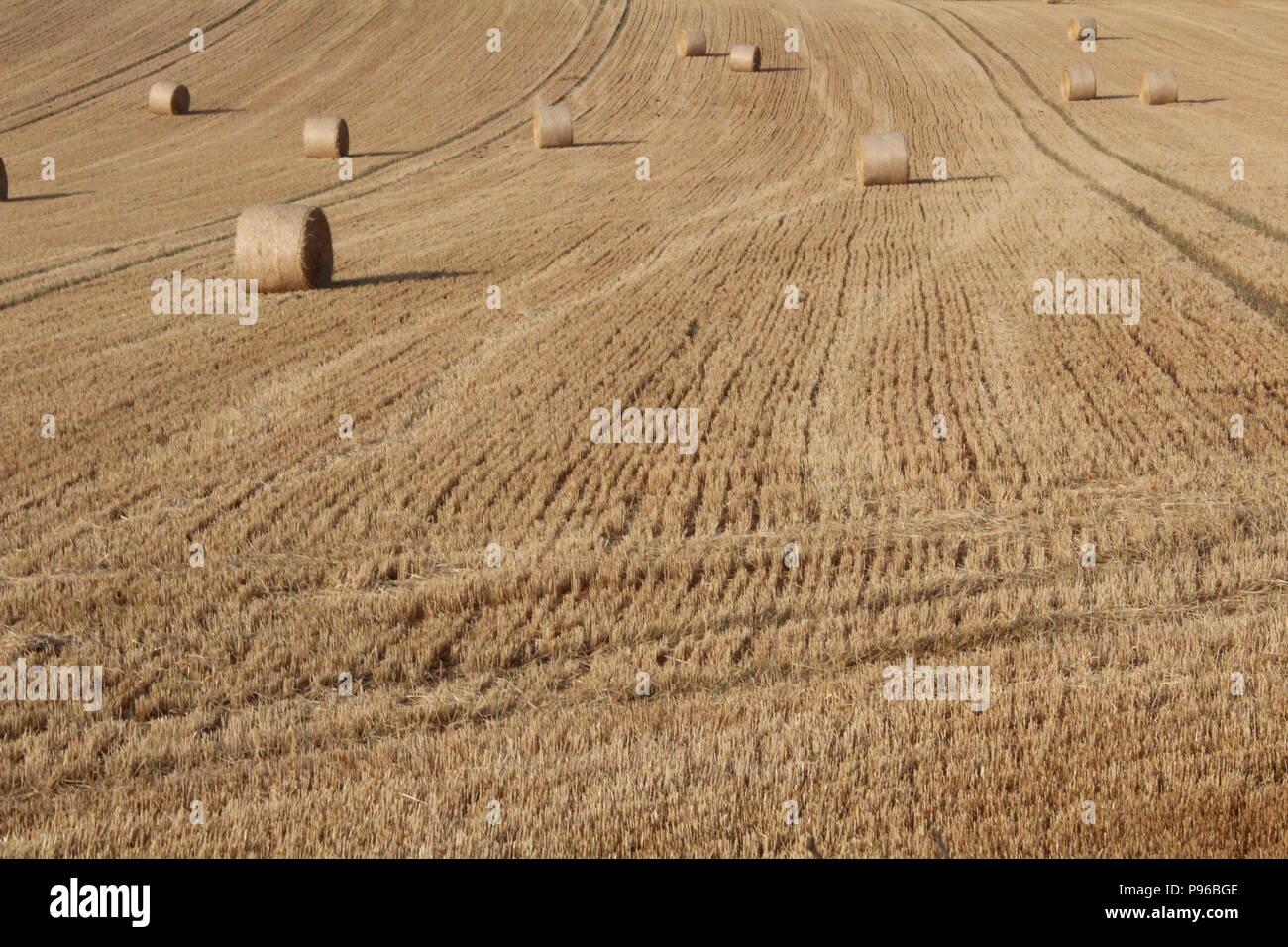 Bales of hay in English countryside in summer - Stock Image