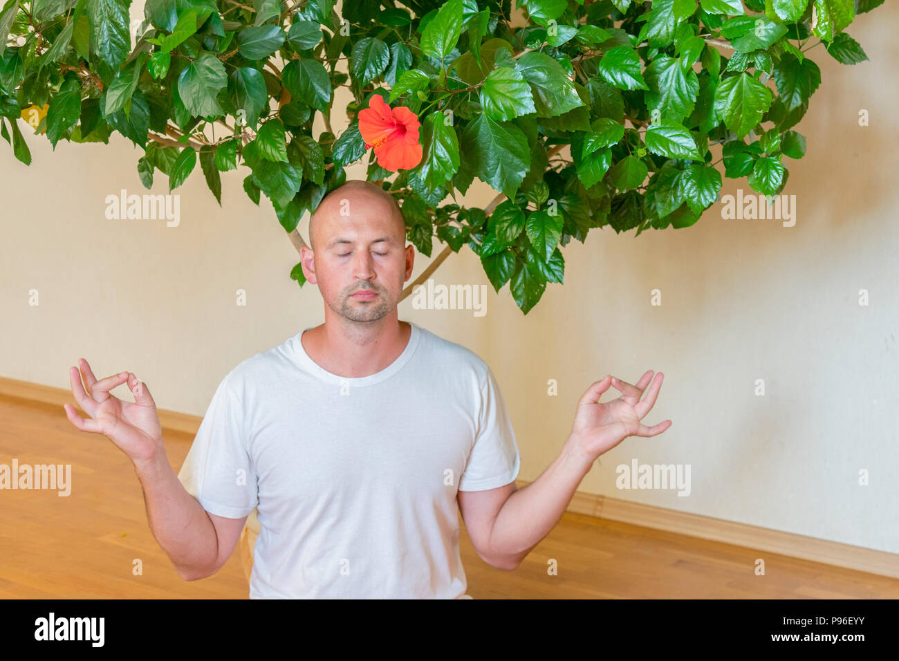 A Man On The Floor In A Lotus Pose Under The Hibiscus Flower Copy