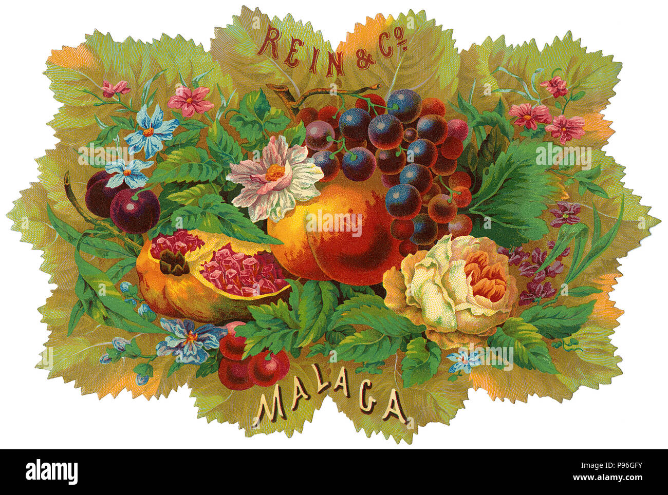 Vintage fruit crate label for Rein & Co, Malaga. - Stock Image
