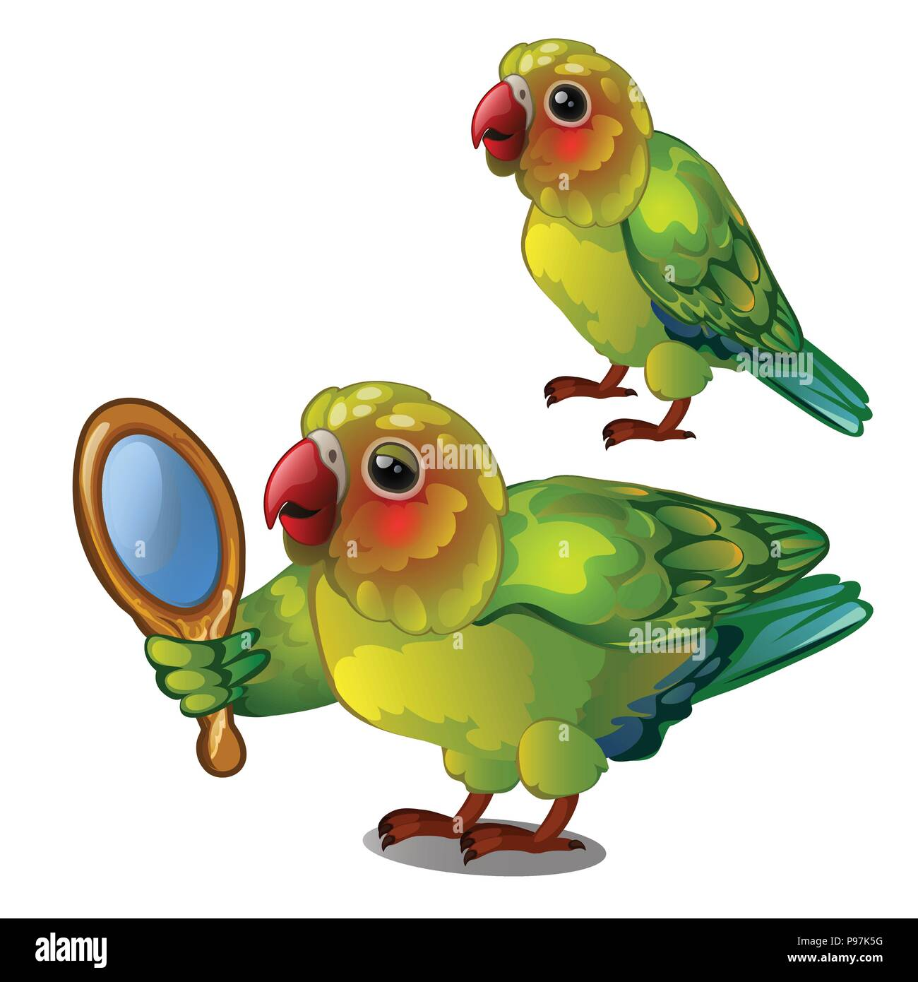 Parrot lovebird admiring her own reflection in the mirror. Tropical tamed bird is isolated on a white background. Animated vector illustration. - Stock Image