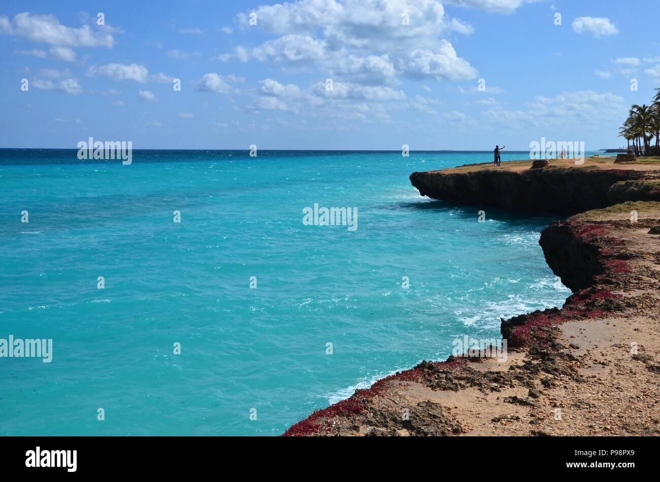 Rocky coast of Varadero Cuba, Xanadu Mansion, caribbean sea, turquoise water, vacation, blue sky, sunny, horizon, beautiful, palm trees, coconuts - Stock Image